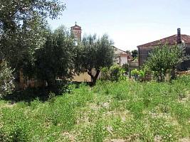 Terreno Edificabile Res. in vendita Contrada San Silvestro Silvi (TE)