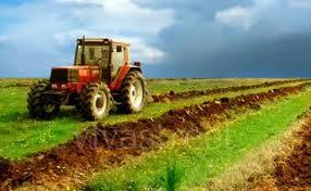 Terreno Agricolo in vendita C.da Chiaramilla Bucchianico (CH)