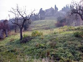 Terreno Agricolo in vendita contrada costa cola Bucchianico (CH)
