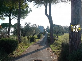 Casa indipendente in vendita via Fontanelle Casalbordino (CH)