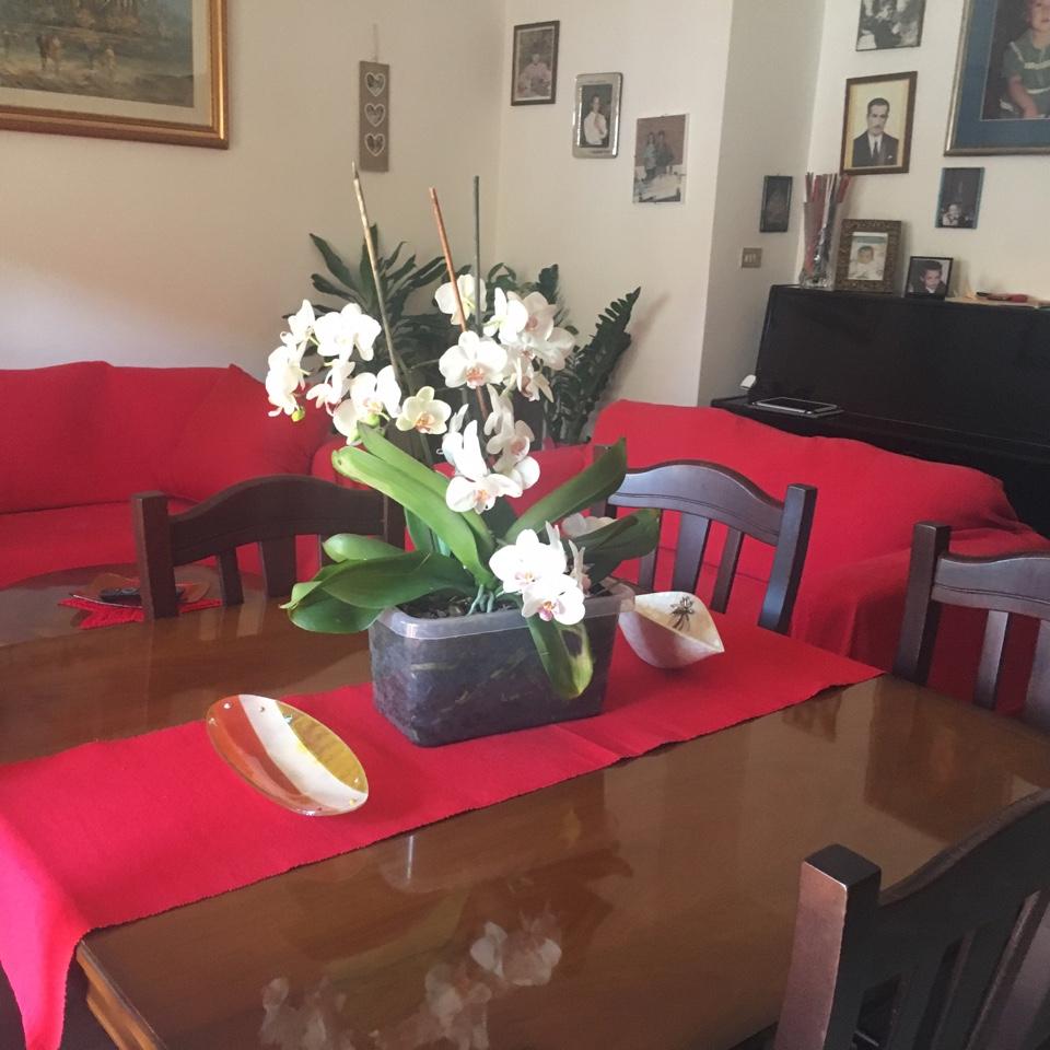 Appartamento in vendita via tirino, 395 Pescara (PE)