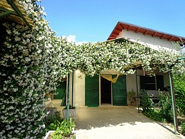 Casale o Rustico in vendita via colle casale Casalincontrada (CH)