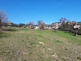 Terreno Edificabile Res. in vendita via vaschiola Torrevecchia Teatina (CH)