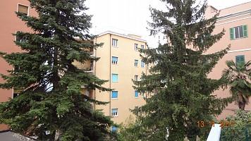 Appartamento in vendita Via Don Minzoni Chieti (CH)