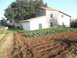 Casa indipendente in vendita  Villalfonsina (CH)