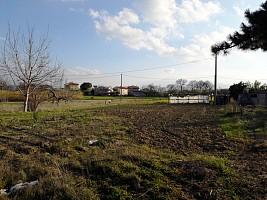 Terreno Edificabile Res. in vendita strada statale 81 Cepagatti (PE)
