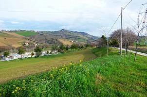 Casale o Rustico in vendita contrada montemarano Agugliano (AN)