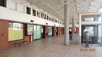 Negozio o Locale in affitto Teate Center Chieti (CH)