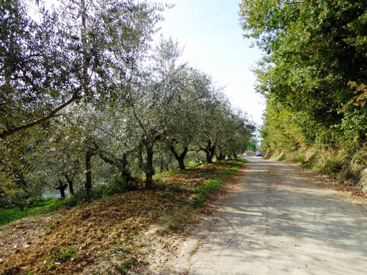 Terreno Agricolo in vendita in  zona Tricalle a Chieti - 406297 foto 1