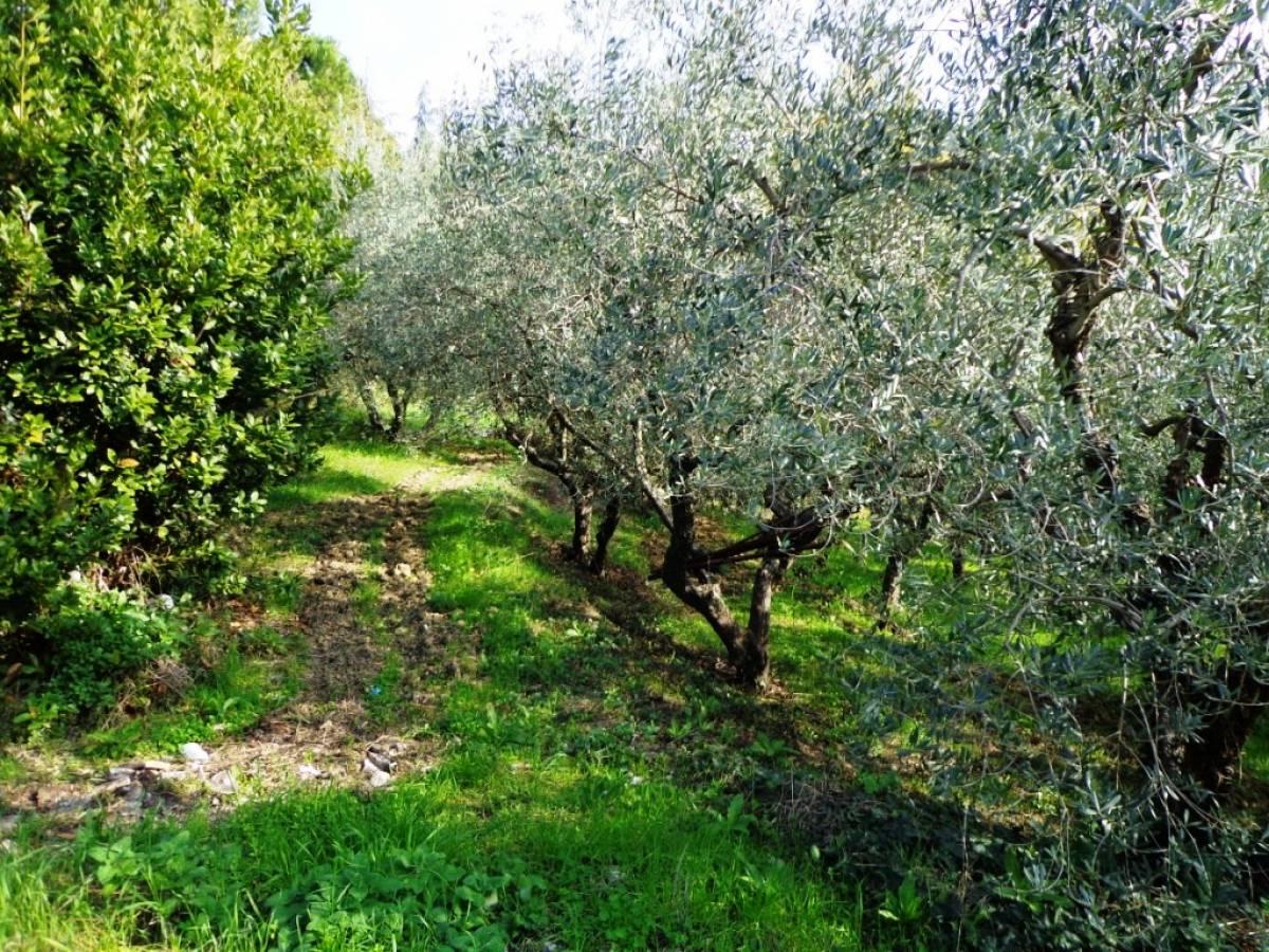 Terreno Agricolo in vendita in  zona Tricalle a Chieti - 406297 foto 3