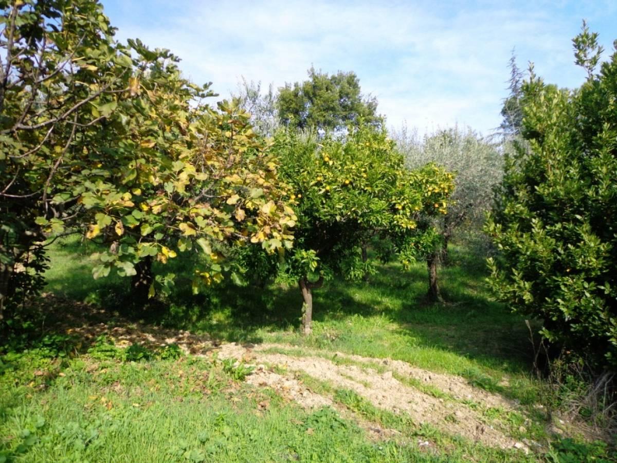 Terreno Agricolo in vendita in  zona Tricalle a Chieti - 406297 foto 4