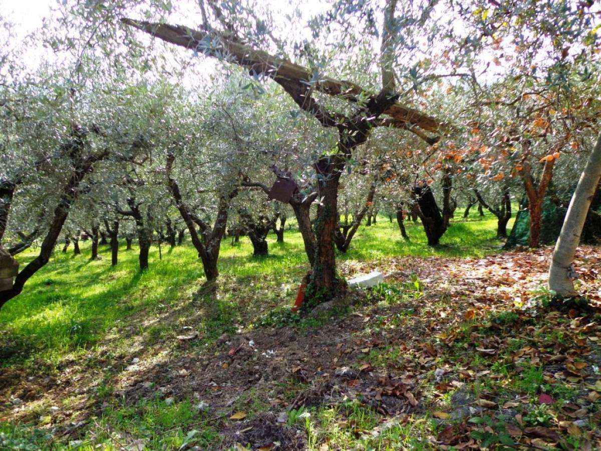 Terreno Agricolo in vendita in  zona Tricalle a Chieti - 406297 foto 5