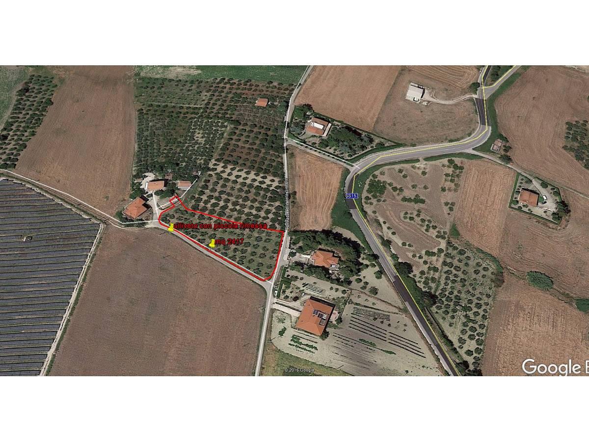 Terreno Agricolo in vendita in contrada colle delle ginestre  a Montenero di Bisaccia - 349047 foto 2
