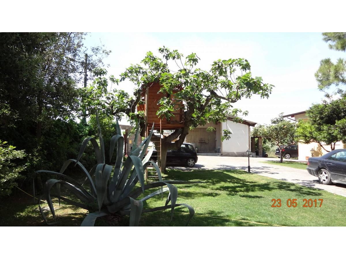 Villa in vendita in C.da Villanesi  a Francavilla al Mare - 392645 foto 3