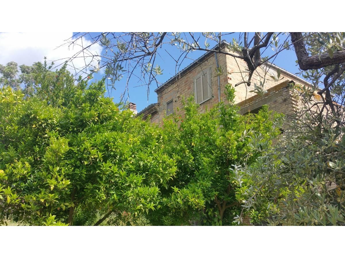Casale o Rustico in vendita in VILLA ROGATTI  a Ortona - 1593139 foto 4