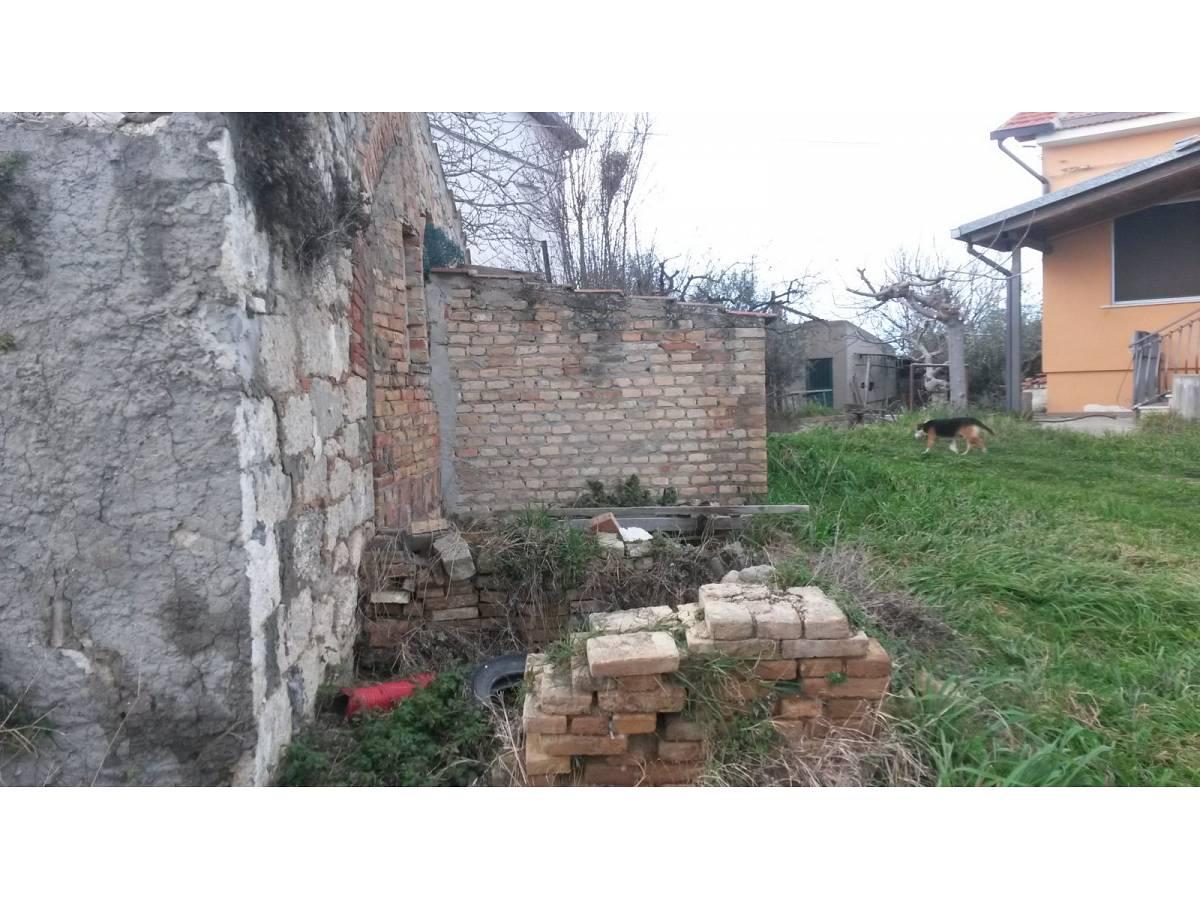 Terreno Agricolo in vendita in contrada colle delle ginestre  a Montenero di Bisaccia - 349047 foto 4