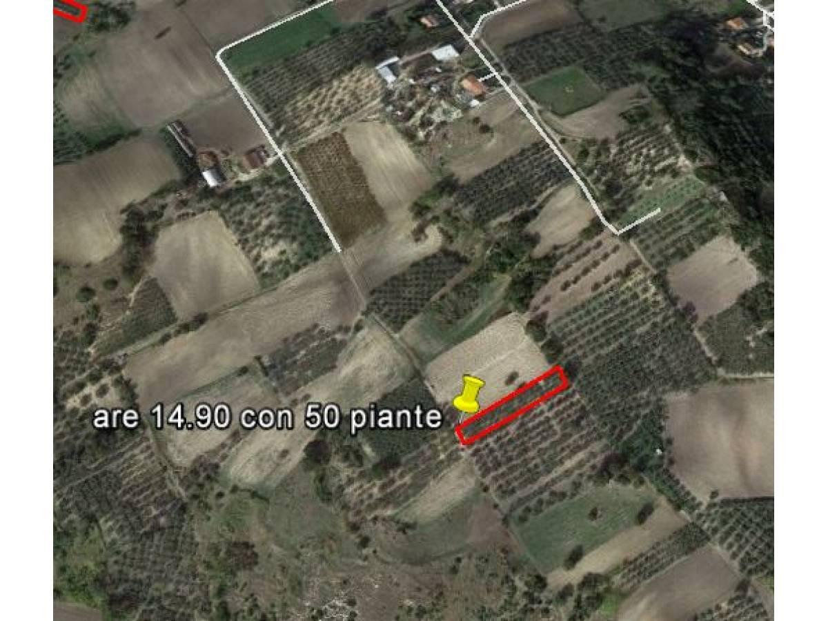 Terreno Agricolo in vendita in Contrada Montalfano  a Cupello - 3381181 foto 1