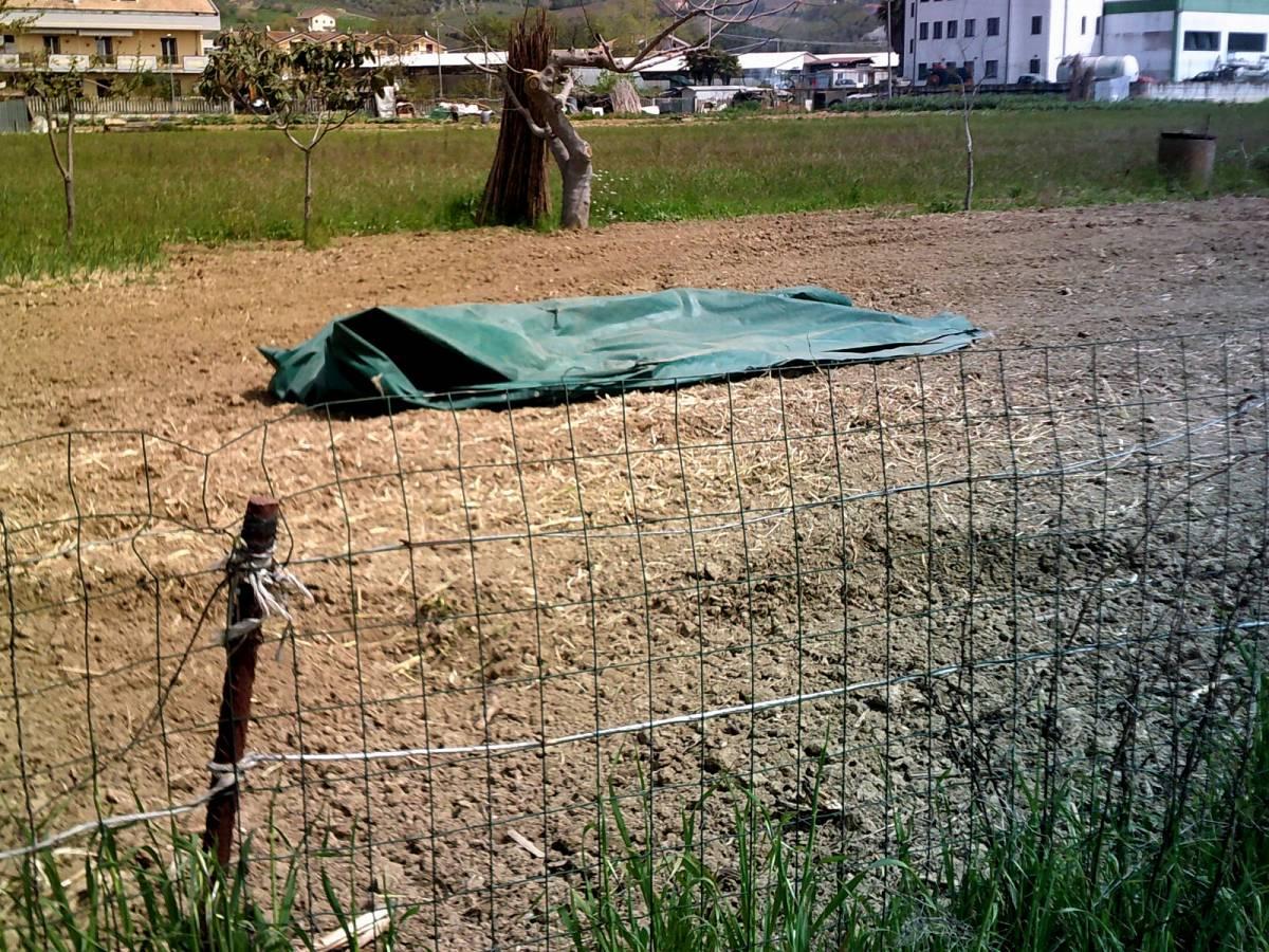 Terreno Edificabile Res. in vendita in ViaVestina  a Montesilvano - 7398232 foto 4