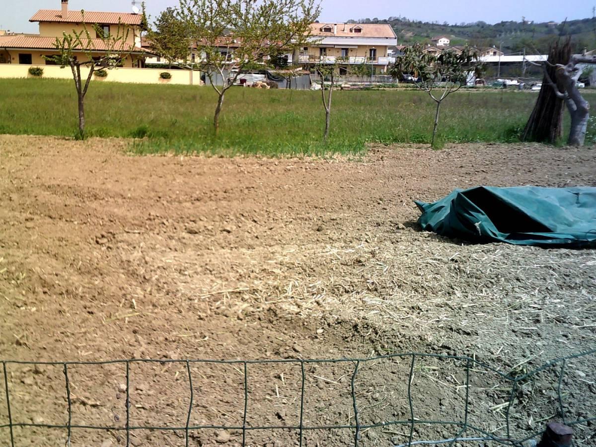 Terreno Edificabile Res. in vendita in ViaVestina  a Montesilvano - 7398232 foto 3