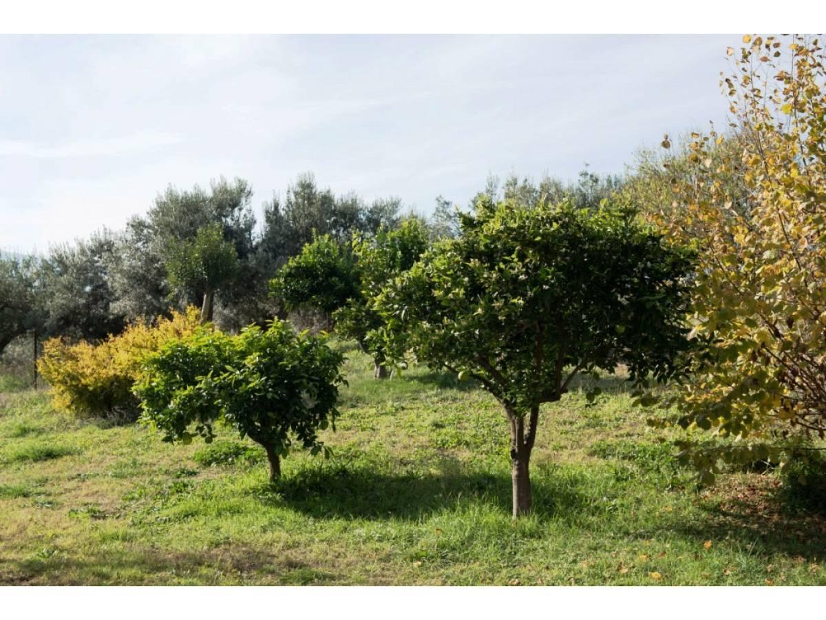 Villa in vendita in contrada santo stefano  a Ripa Teatina - 9579761 foto 28