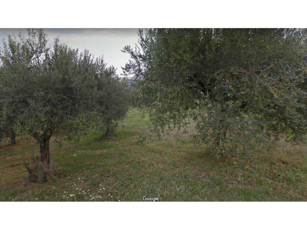 Terreno Edificabile Res. in vendita in C.da Collevento zona Colle a Montesilvano - 6857312 foto 5