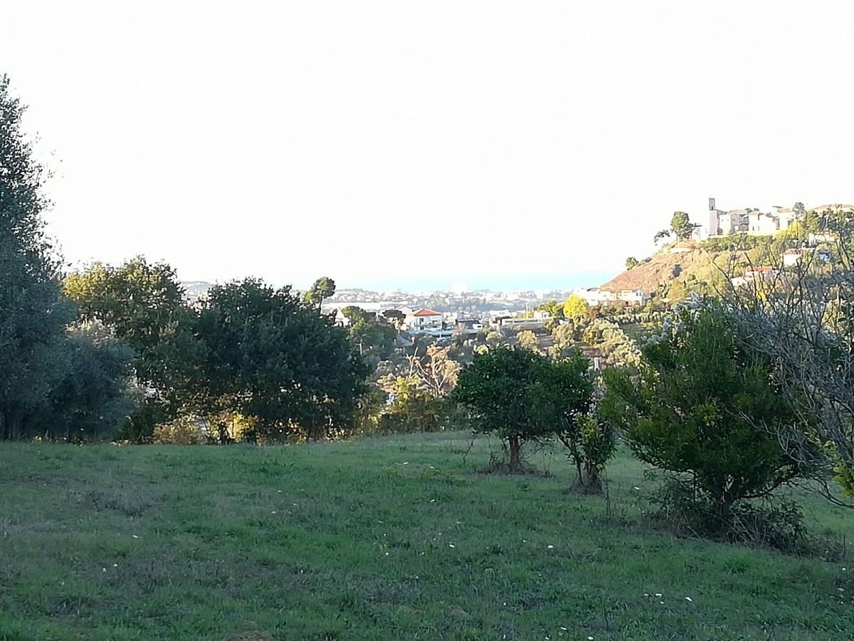 Terreno Edificabile Res. in vendita in C.da Collevento zona Colle a Montesilvano - 6857312 foto 7