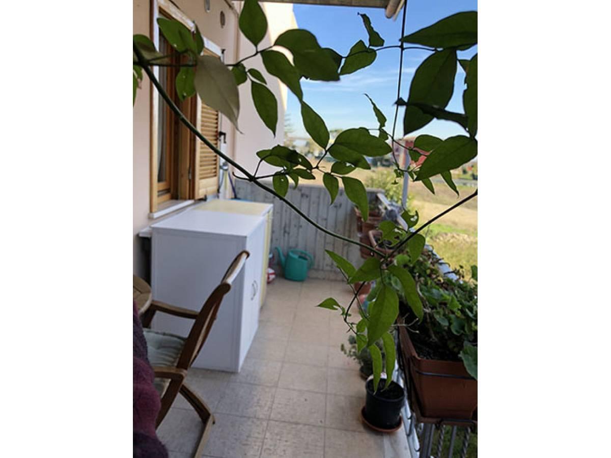 Appartamento in vendita in VIALE PETRUZZI  a Città Sant'Angelo - 6031024 foto 8