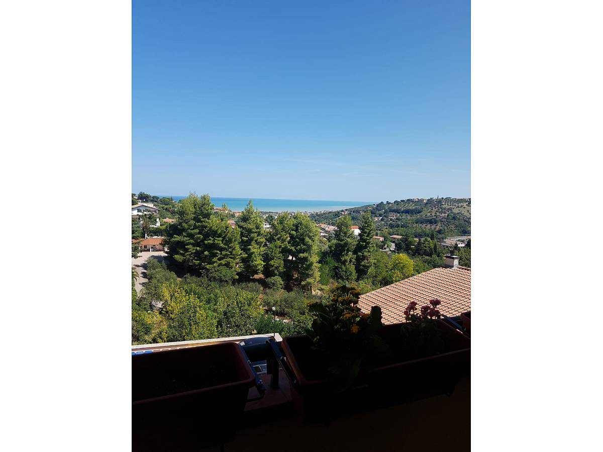 Appartamento in vendita in via Spagnuolo zona Contrada Macchiano a Montesilvano - 5897151 foto 6