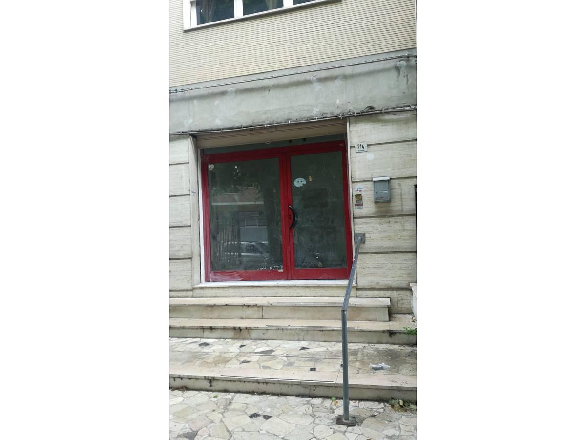 Negozio o Locale in affitto in Via Pescara zona Scalo Mad. Piane - Universita a Chieti - 4410707 foto 2