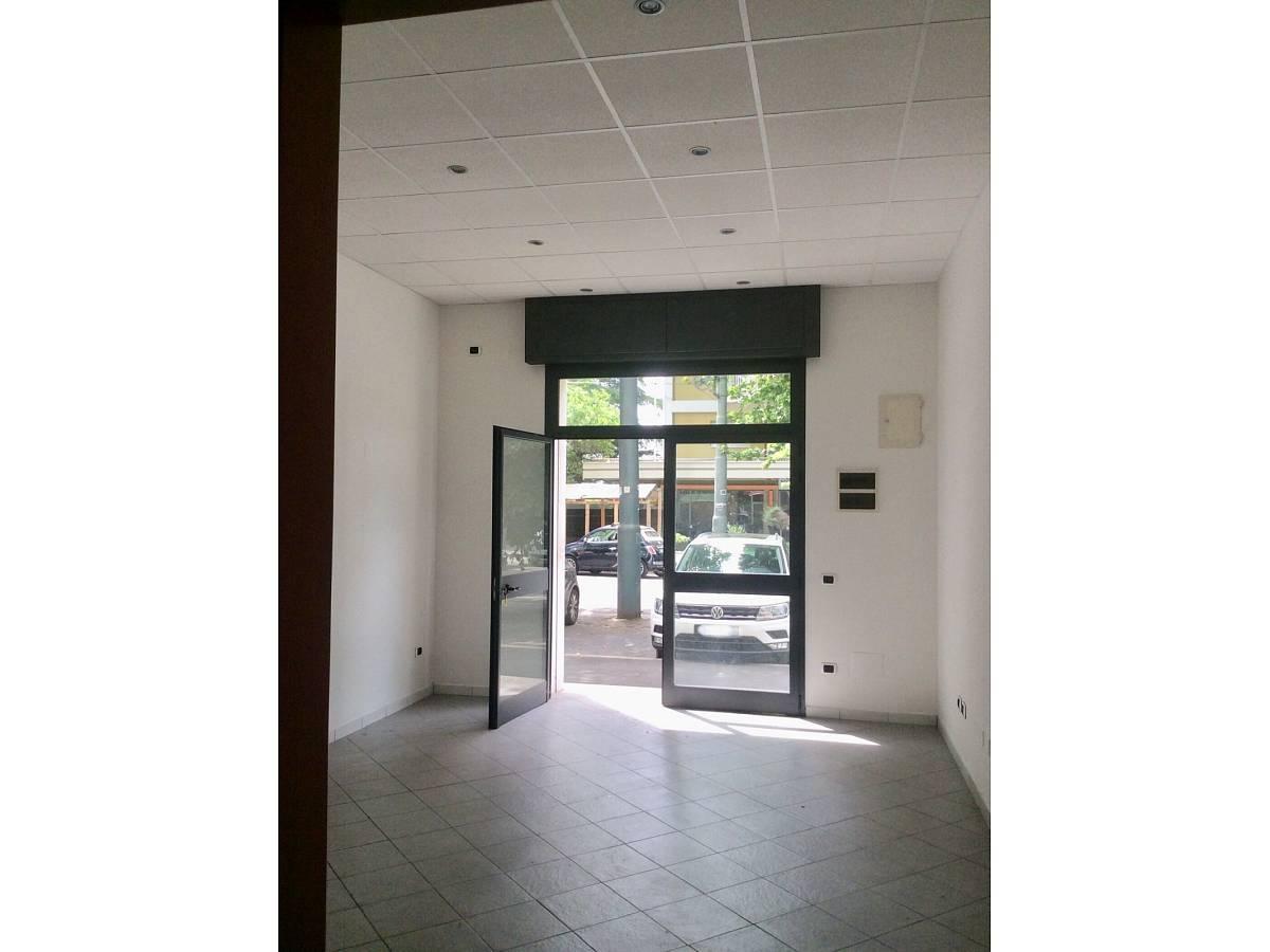 Negozio o Locale in vendita in VIALE BENEDETTO CROCE zona Scalo Mad. Piane - Universita a Chieti - 3933472 foto 8