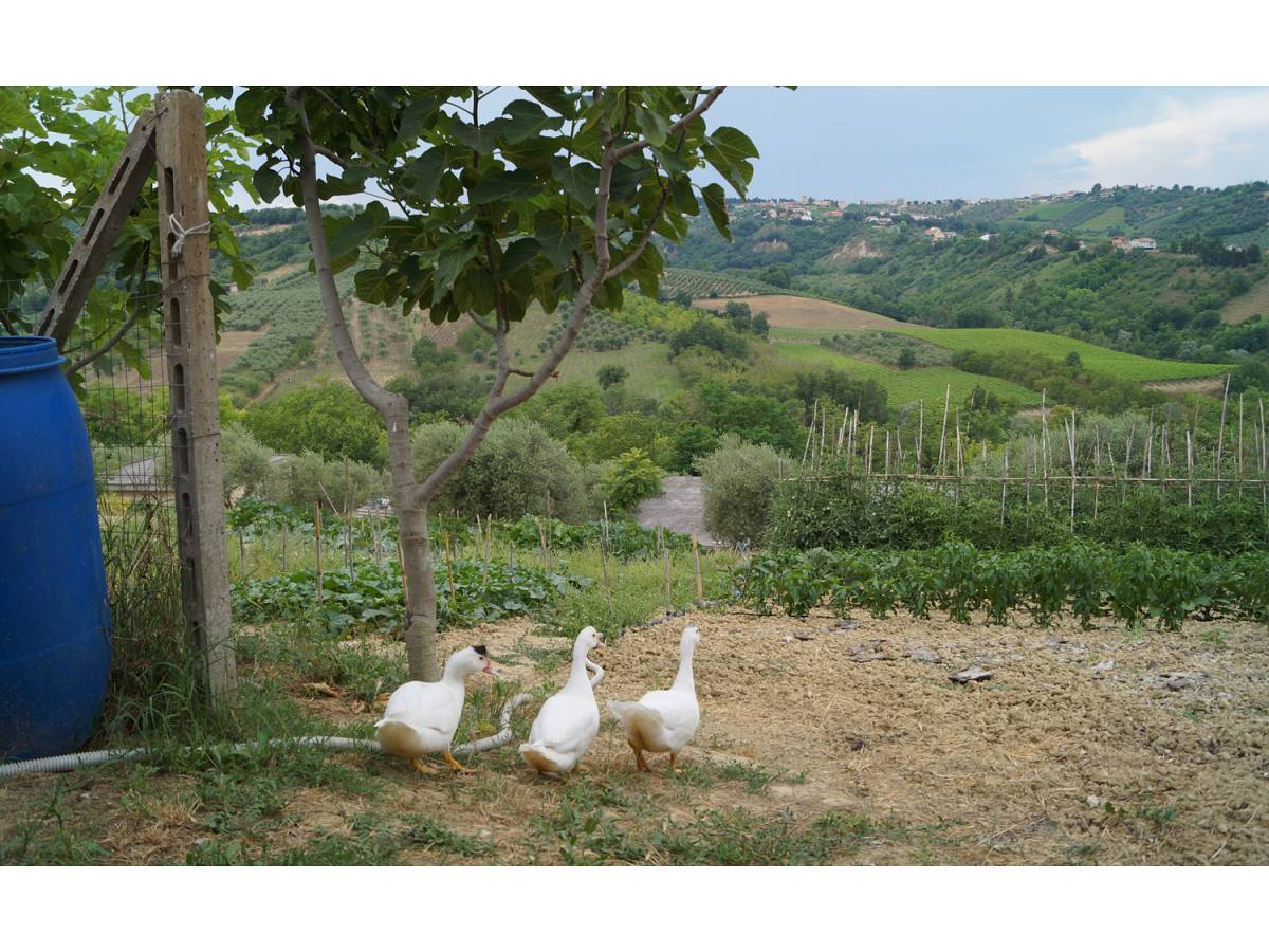 Casa indipendente in vendita in Contrada Feudo  a Bucchianico - 8839445 foto 17