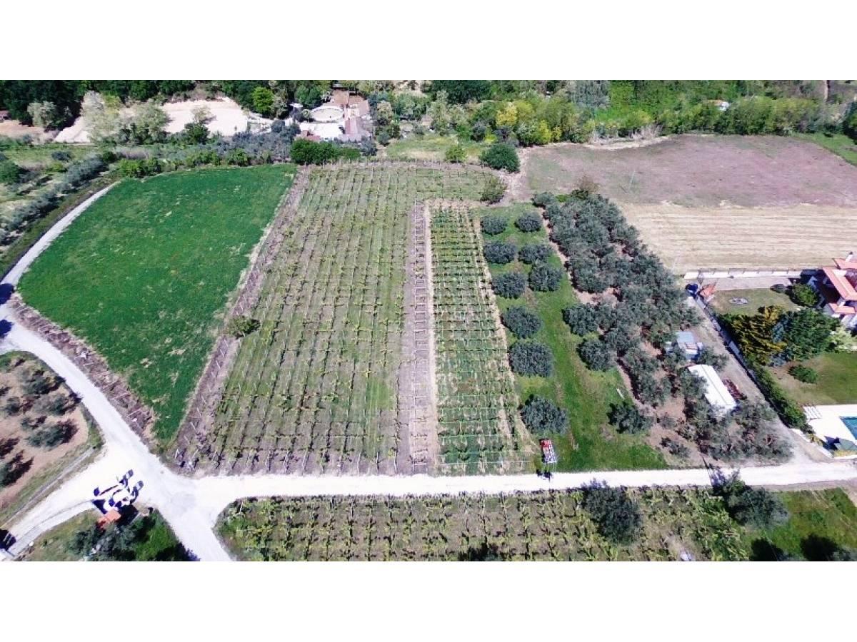 Terreno Agricolo in vendita in   a Ortona - 541861 foto 5