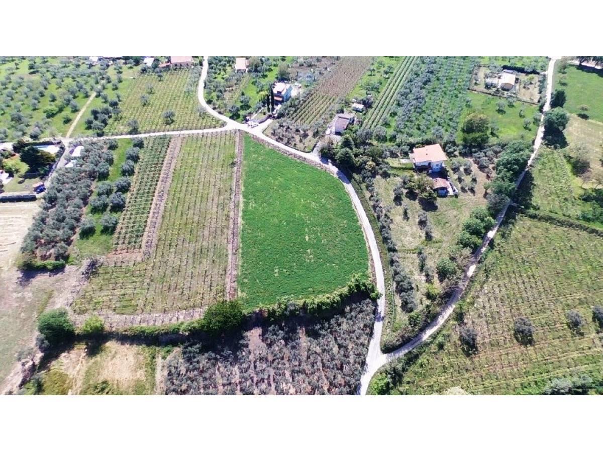 Terreno Agricolo in vendita in   a Ortona - 541861 foto 6