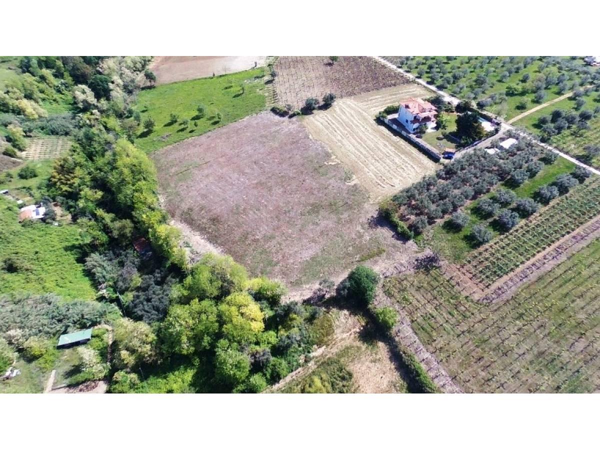 Terreno Agricolo in vendita in   a Ortona - 541861 foto 9