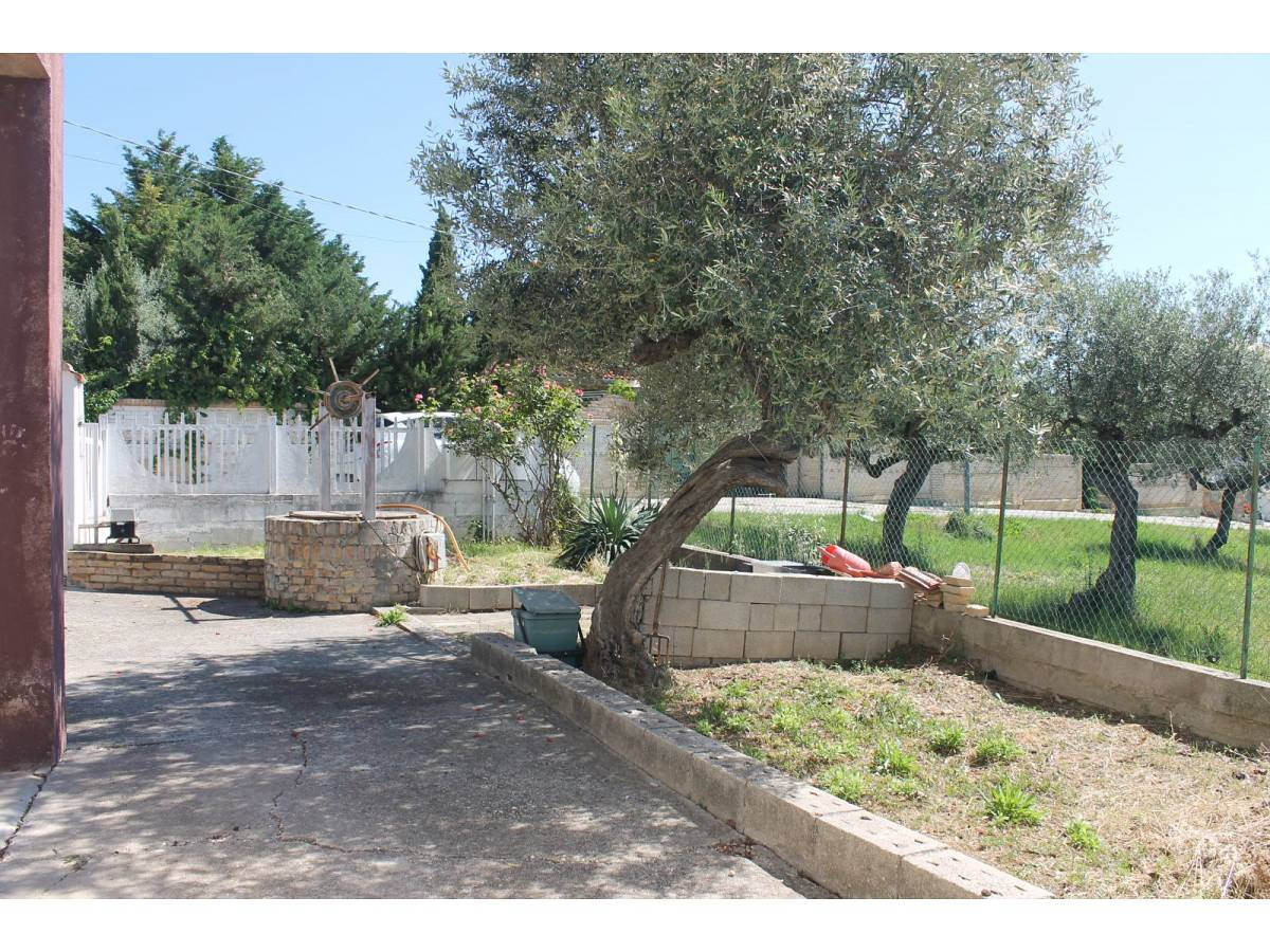 Appartamento in vendita in VIA SAN GIACOMO  a Collecorvino - 4360397 foto 15