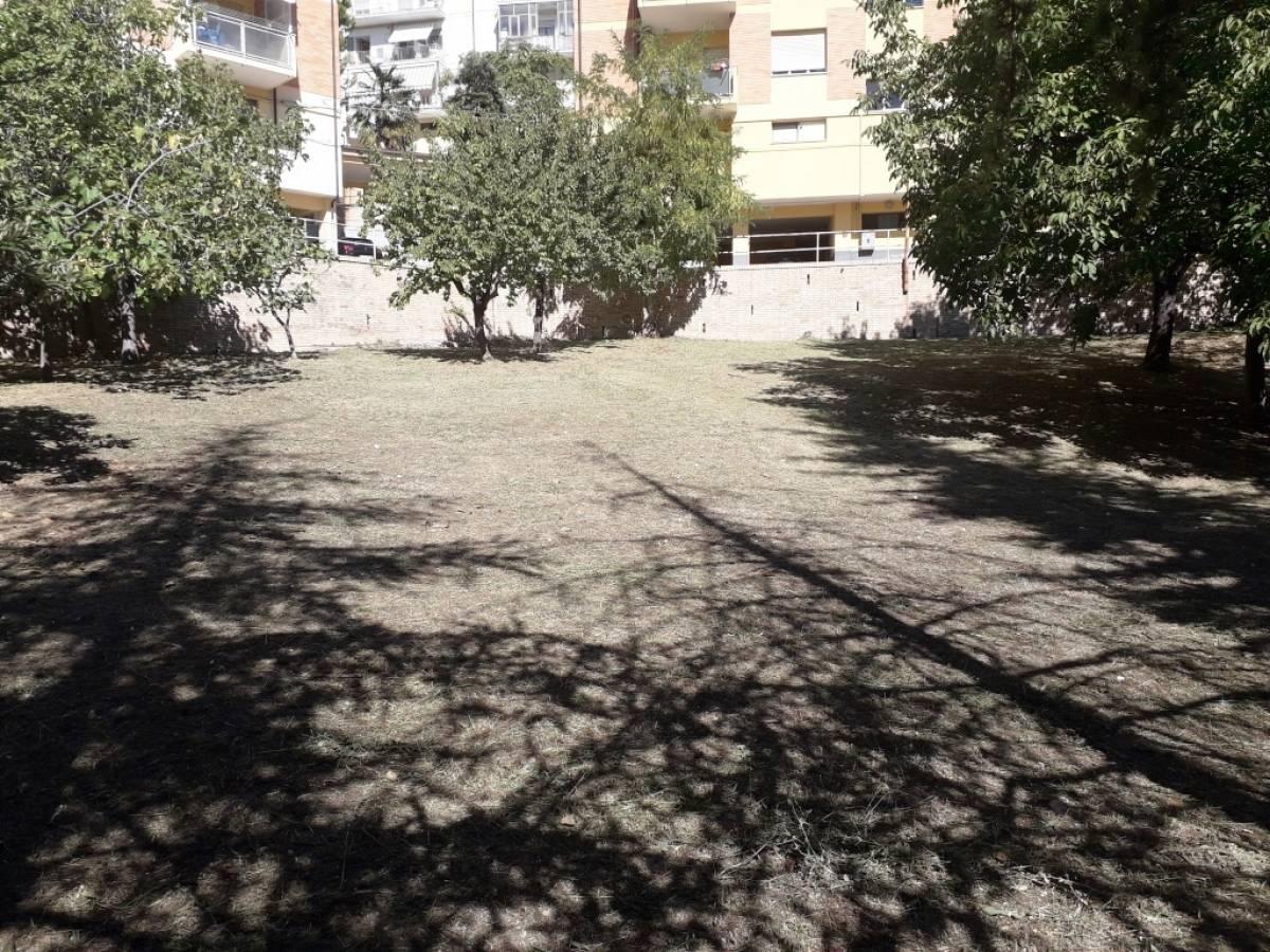 Appartamento in vendita in via grifone zona Filippone a Chieti - 6793302 foto 1