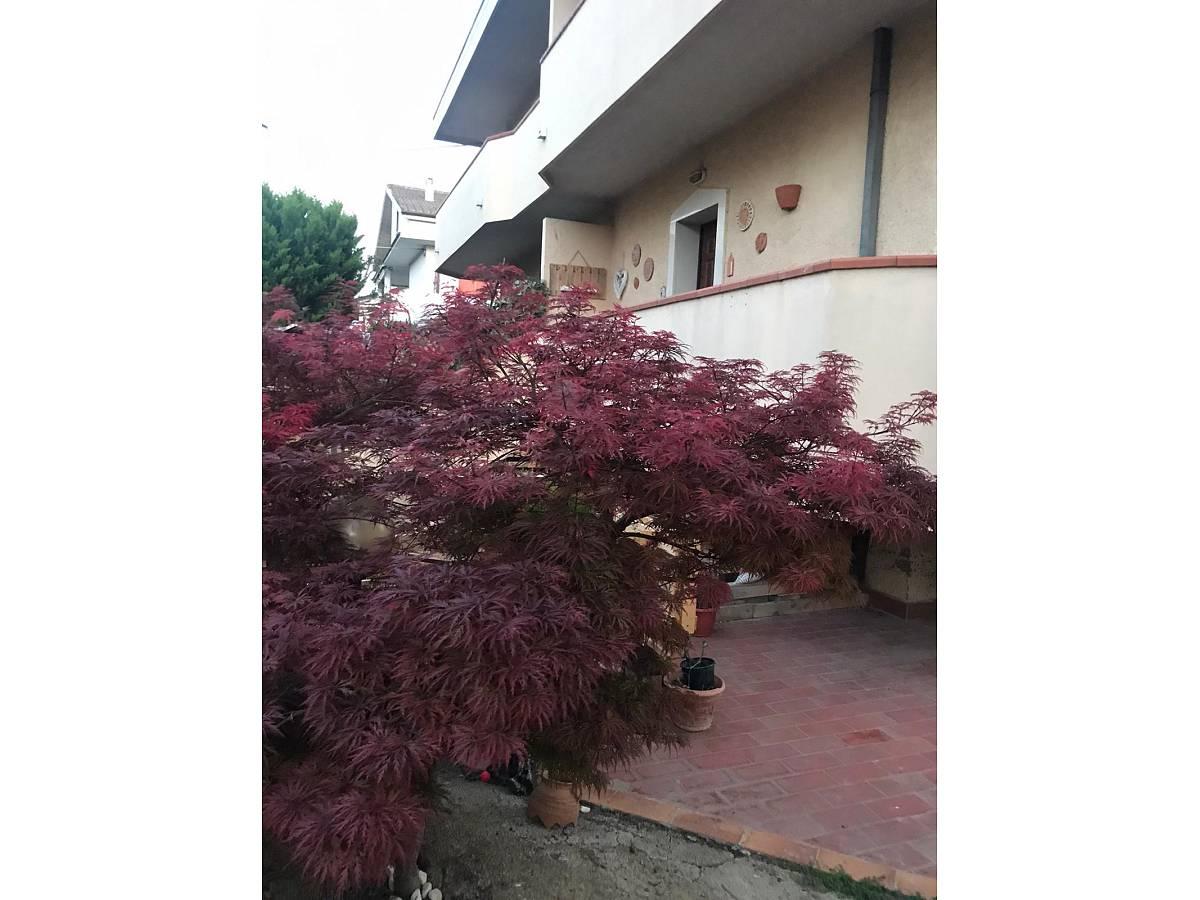 Villa a schiera in vendita in via pascoli  a Cappelle sul Tavo - 1811887 foto 11