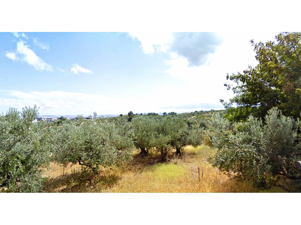 Terreno Edificabile Res. in vendita in   a Cupello - 770977 foto 5