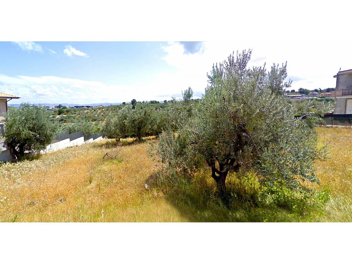 Terreno Edificabile Res. in vendita in   a Cupello - 770977 foto 7